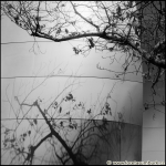 fotografie-z-cest