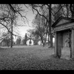 Bývalý hřbitov Brtníkách_výstava České Nizozemí_foto Jiří Stejskal